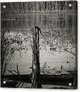 Fancher Davidge 1 Acrylic Print