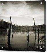 Fancher Davidge 2 Acrylic Print