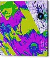 Fantasi Violaflori Acrylic Print by Halina Nechyporuk