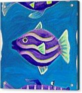 Fantasy Fish Acrylic Print