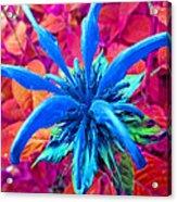 Fantasy Flower 1 Acrylic Print