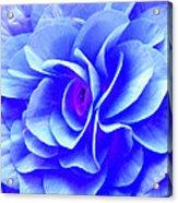 Fantasy Flower 10 Acrylic Print