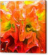 Fantasy Flower 7 Acrylic Print