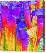 Fantasy Flowers Acrylic Print by Margaret Saheed