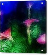 Fantasy Flowers Traveling Pigments Hp Acrylic Print