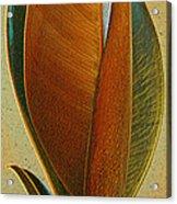 Fantasy Leaf Acrylic Print