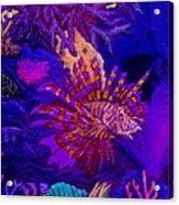 Fantasy Lionfish Acrylic Print