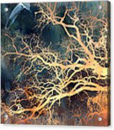 Seagull Gothic Fantasy Surreal Trees And Seagull Flying Acrylic Print