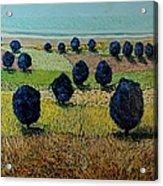 Faraway Field Acrylic Print