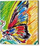 Farfalla Acrylic Print