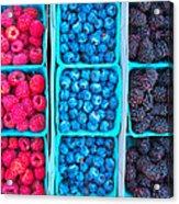 Farm Fresh Berries - Raspberries Blueberries Blackberies Acrylic Print