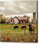 Farm Living Acrylic Print