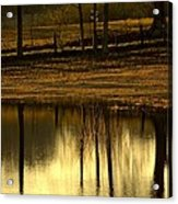 Farm Pond Reflections Acrylic Print