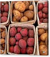 Farm Potatoes Acrylic Print