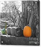 Farm Stand In Autumn Acrylic Print