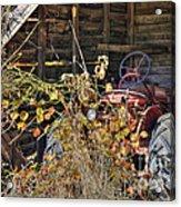 Farmall Find Acrylic Print by Benanne Stiens