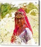 Farmers Fields Harvest India Rajasthan 8 Acrylic Print