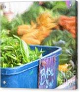 Farmer's Market Basil Acrylic Print
