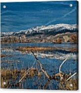 Farmers Pond Acrylic Print