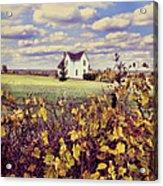 Farmhouse And Grapevines Acrylic Print
