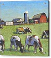 Farming In The Dell Acrylic Print