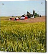 Farmlands Near Davenport Acrylic Print