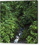 Fast River Acrylic Print