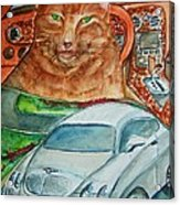 Fat Cat And The Bentley Acrylic Print