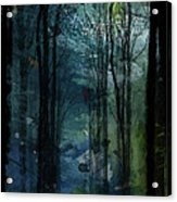 Father Frost Is Coming Acrylic Print