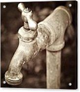 Faucet In Fall Acrylic Print by Cathie Tyler