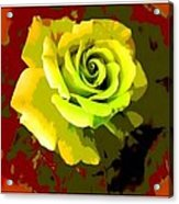 Fauvism Roses Triptych Acrylic Print