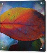 Fauvist Hydrangea Leaf Acrylic Print
