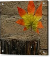 Faux Leaf Acrylic Print
