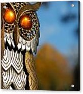 Faux Owl With Golden Eyes Acrylic Print by Amy Cicconi