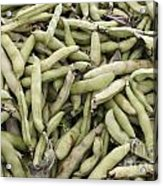 Fava Beans Acrylic Print