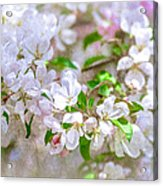 Feast Of Life 23 - Spring Wreath Acrylic Print