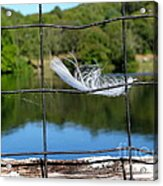 Feather And Fence Acrylic Print