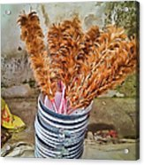 Feather Duster Bouquet Acrylic Print