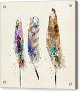 Feathers Acrylic Print by Bri B