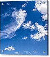 Feathertail Cloud Acrylic Print