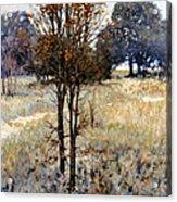 Feathery Field Acrylic Print