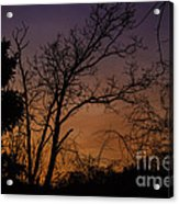 February Sunrise Acrylic Print