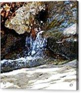 Feeder Stream Acrylic Print