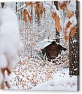 Feeding Site In The Forest In Winter  Acrylic Print