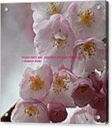 Feelings Of Flowers Acrylic Print
