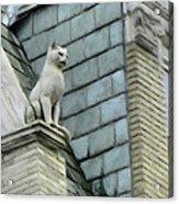 Feline Sentry Acrylic Print