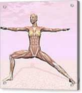 Female Musculature Performing Warrior Acrylic Print