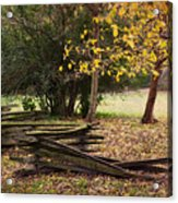 Fence And Tree In Autumn Acrylic Print