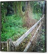 Fence Acrylic Print by Chasity Johnson