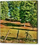 Fence - Featured In Comfortable Art Group Acrylic Print